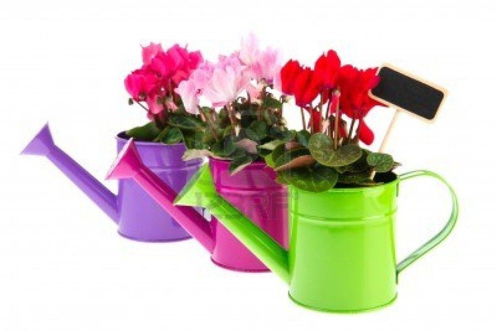 renueva y decora tu terraza o jardin Virginia Esber-3