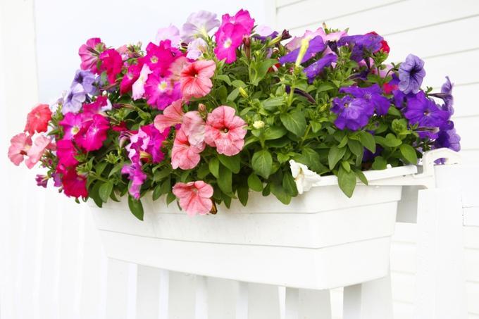 renueva y decora tu terraza o jardin Virginia Esber-7